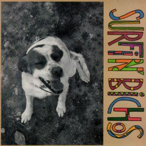 portada del disco Surfin' Bichos
