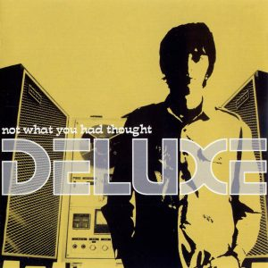 portada del disco Not What You Had Thought