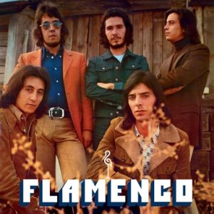 portada del disco Flamenco