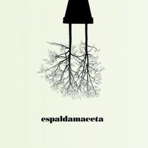 portada del disco Madera y Poca Luz