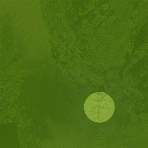 portada del disco Concrete Light