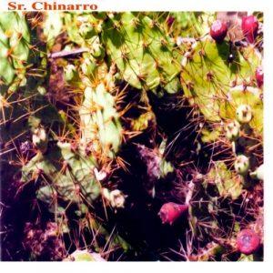 portada del disco Sr. Chinarro