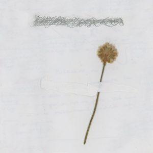 portada del disco Na Cela