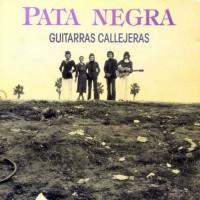 foto del grupo Guitarras Callejeras