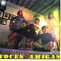 foto del grupo Voces Amigas