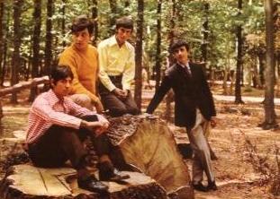 foto del grupo imagen del grupo Los Ángeles