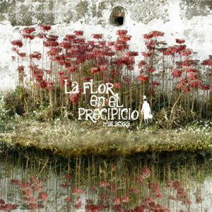 portada del disco La Flor en el Precipicio