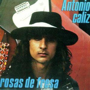 portada del disco Cáliz / Rosas de Fresa