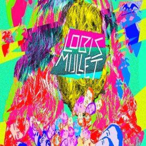 portada del disco Lobis Mullet