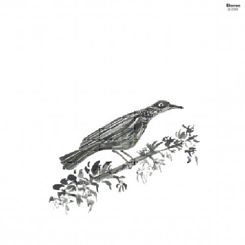 portada del album Canto Peregrino