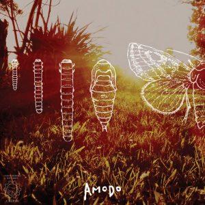 portada del disco Amodo