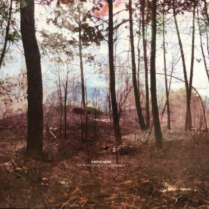 portada del album Entre as Zocas e os Lóstregos