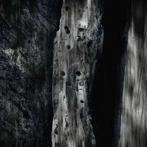 portada del disco The Hum