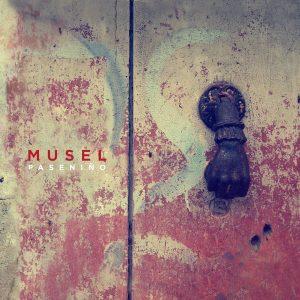 portada del disco Paseniño