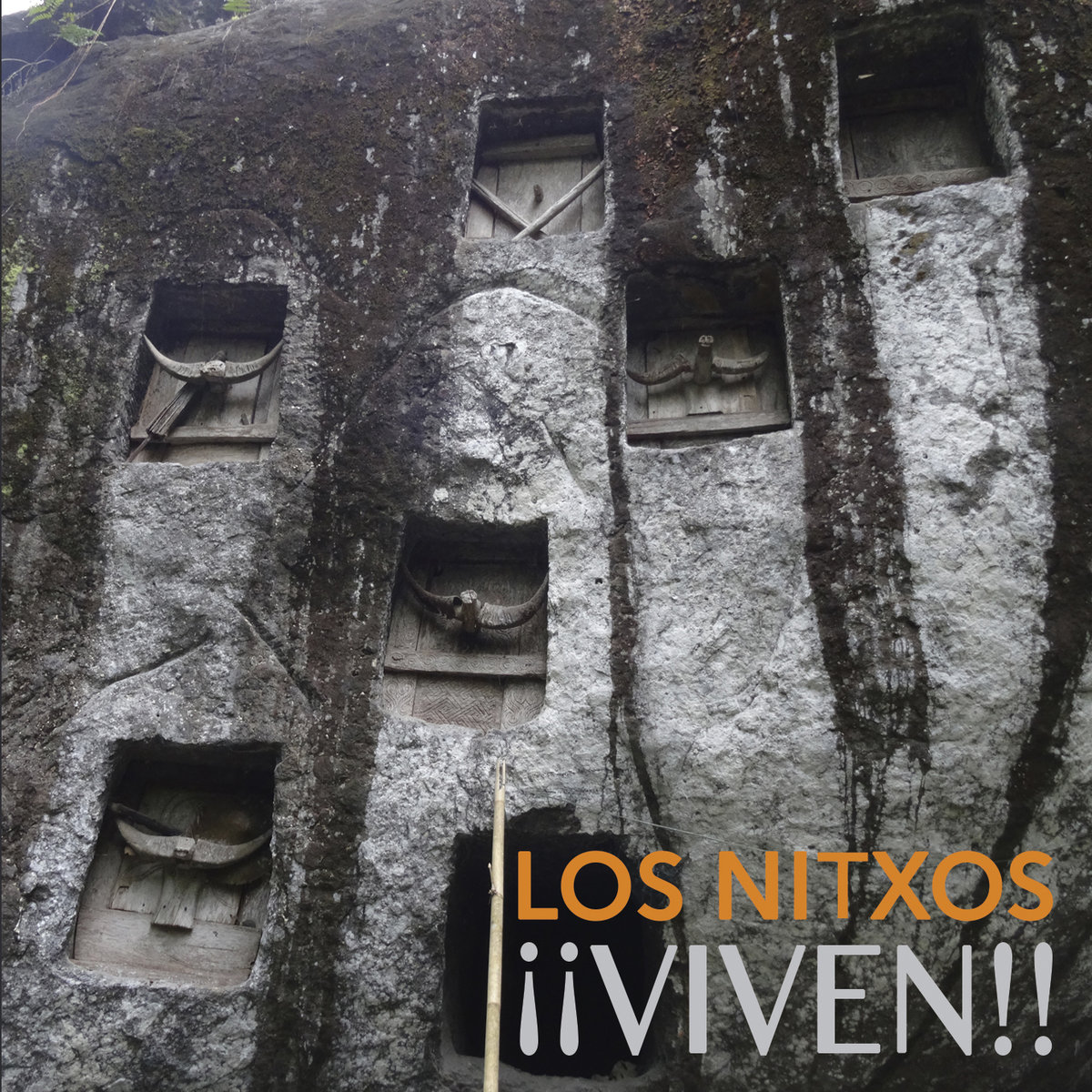 portada del album ¡¡Viven!!